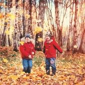Осенние забавы